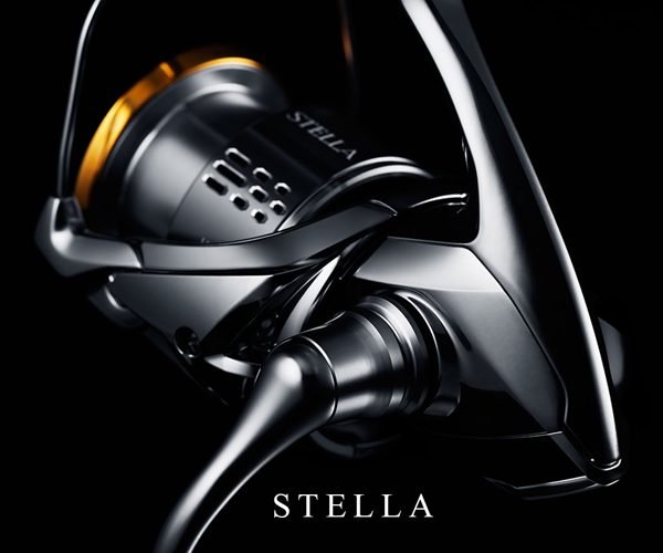 2018 Stella